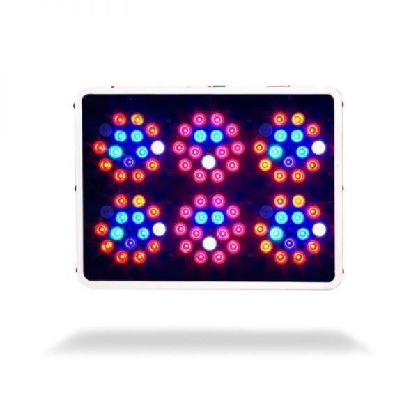 Kind LED K3 L300 Bottom Illuminated