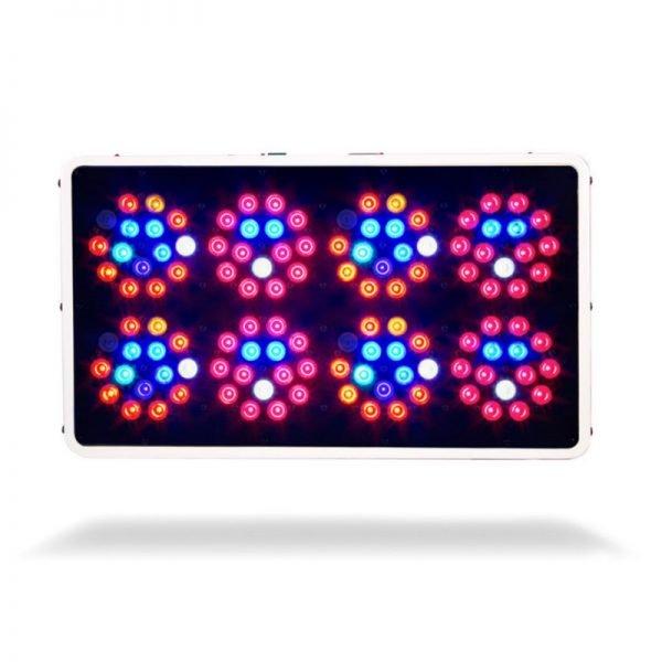 Kind LED K3 L450 Diodes Illuminated