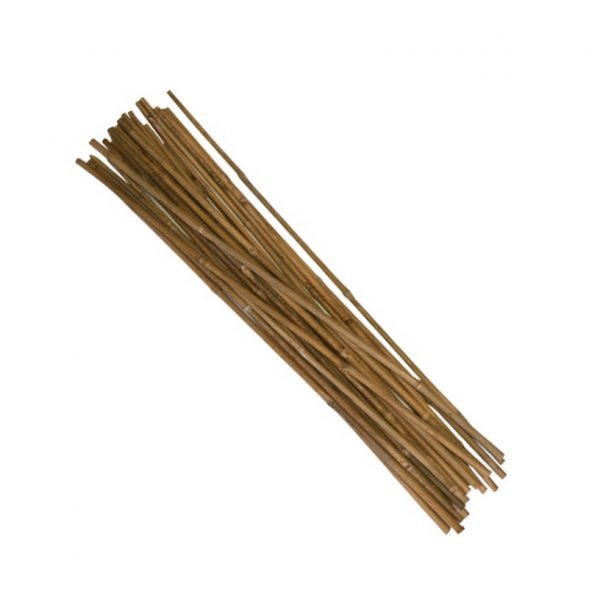 2-bamboo-stakes
