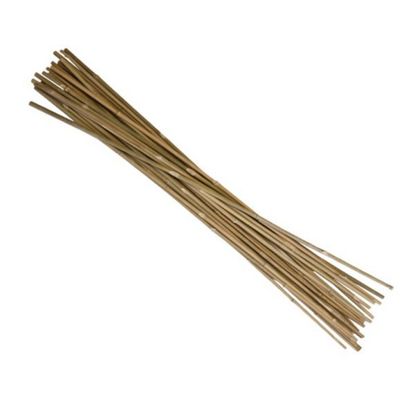 3-bamboo-stakes