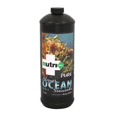 nutri-pure-ocean-seaweeds-1l