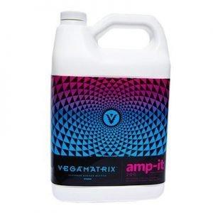 vegamatrix-amp-it