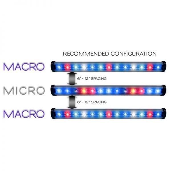 kind-veg-macro-and-micro