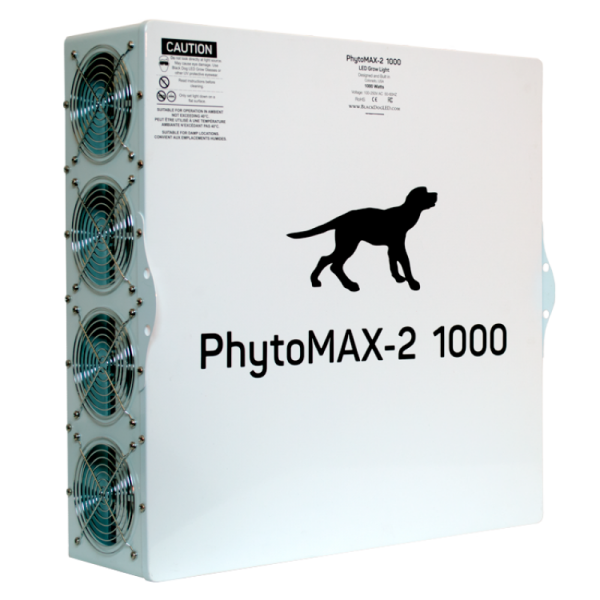 pm21000backrightsquare
