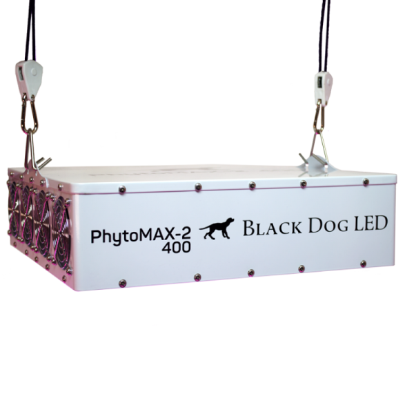 Black Dog LED Phyto Max 2 400 laying down