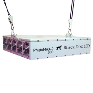 Black Dog LED Phyto Max 2 600 laying down