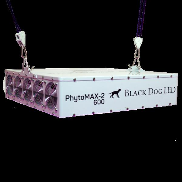 Black Dog LED Phyto Max 2 600 laying down