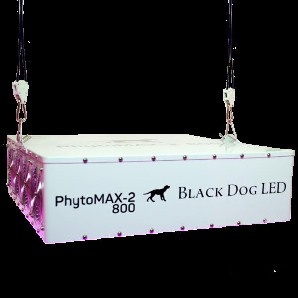 Black Dog LED Phyto Max 2 800 laying down