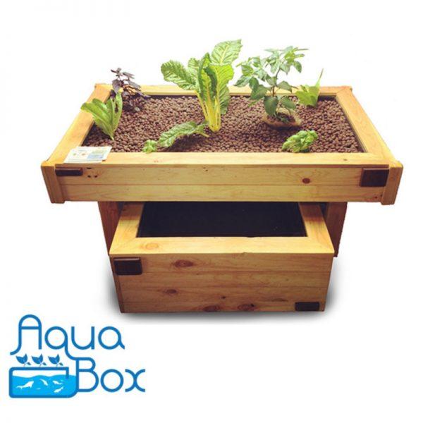 AquaBox Aquaponics Grow Kit