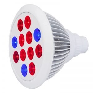 Cirrus Evo E27 LED Light