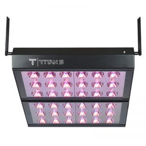 Cirrus Titan 5 LED Grow Light